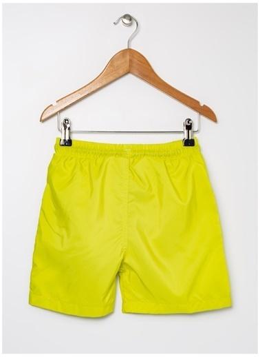 Limon Company Limon Sarı Ahtapot Desenli Erkek Çocuk Şort Mayo Sarı